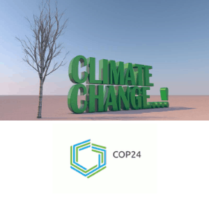 Klimakonferenz COP24 Kattowitz
