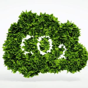 Co2 Steuer - wirksam gegen den Klimawandel
