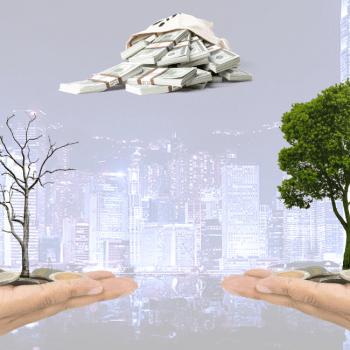 Grünes Kapital - Hilfe zur Rettung der Welt