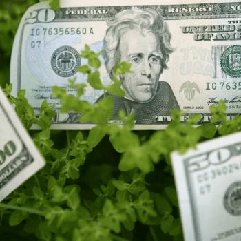 ökologisch nachhaltige Geldanlagen - ein Überblick