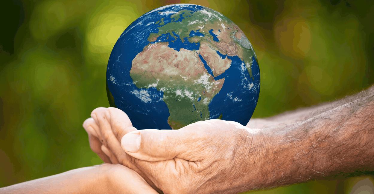 Mit grünem Investment Vermögen aufbauen UND den Planeten retten