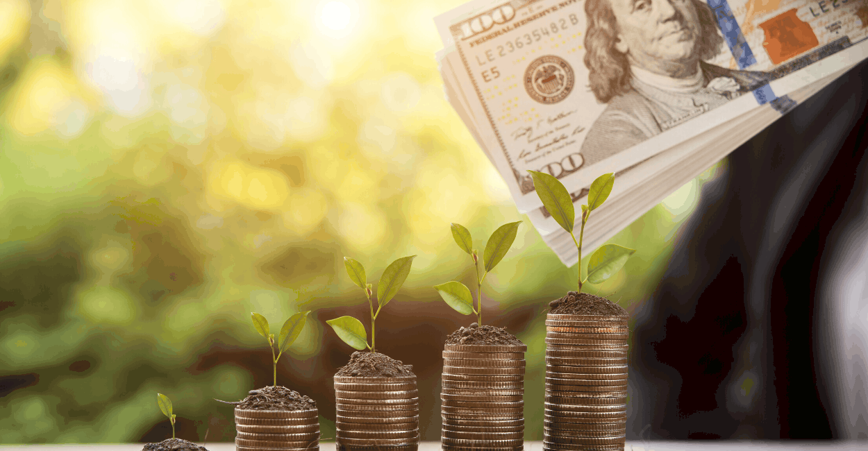 Nachhaltiges Investment: Welche Möglichkeiten bieten sich Anlegern?