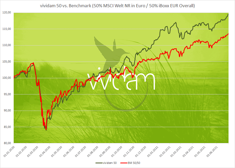 Vividam 50 versus Benchmark